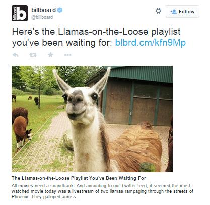 llama blog - playlist