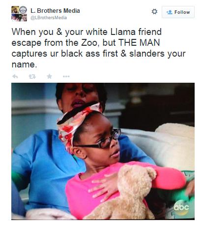 llama blog - racial justice jokes